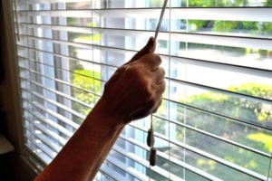 Window blinds will give you the privacy you need
