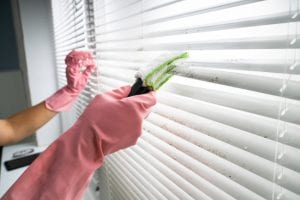 Blinds are essential in any home